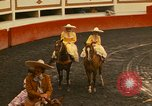 Image of horses Mexico City Mexico, 1975, second 8 stock footage video 65675039477