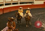 Image of horses Mexico City Mexico, 1975, second 9 stock footage video 65675039477