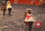Image of horses Mexico City Mexico, 1975, second 12 stock footage video 65675039477