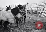Image of American encampment World War I Europe, 1918, second 9 stock footage video 65675039656