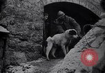 Image of French soldiers Europe, 1918, second 11 stock footage video 65675039782
