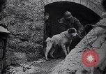 Image of French soldiers Europe, 1918, second 12 stock footage video 65675039782