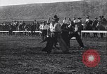 Image of Tiny Mite horse United States USA, 1927, second 10 stock footage video 65675039842