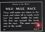 Image of wild mule race United States USA, 1927, second 2 stock footage video 65675039852