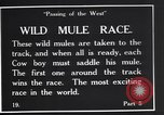 Image of wild mule race United States USA, 1927, second 3 stock footage video 65675039852