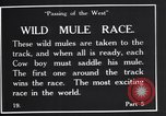 Image of wild mule race United States USA, 1927, second 4 stock footage video 65675039852