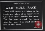 Image of wild mule race United States USA, 1927, second 5 stock footage video 65675039852