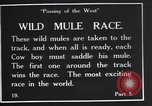 Image of wild mule race United States USA, 1927, second 6 stock footage video 65675039852
