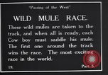 Image of wild mule race United States USA, 1927, second 8 stock footage video 65675039852