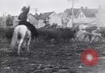 Image of cowboys United States USA, 1927, second 6 stock footage video 65675039858