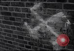 Image of Swastika graffiti in Cologne in 1961 and 1935 Nazi boycott Jewish busi Germany, 1961, second 11 stock footage video 65675039876
