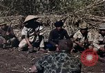 Image of American soldier of Special Forces South Vietnam, 1962, second 5 stock footage video 65675039897