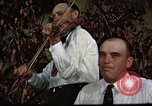 Image of tobacco farm Virginia United States USA, 1962, second 8 stock footage video 65675039930