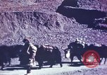 Image of Captain Brooke Dolan Lhasa Tibet, 1943, second 3 stock footage video 65675039988