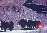 Image of Captain Brooke Dolan Lhasa Tibet, 1943, second 4 stock footage video 65675039988