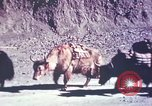 Image of Captain Brooke Dolan Lhasa Tibet, 1943, second 11 stock footage video 65675039988