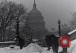Image of Shoveling and playing in snow Washington DC USA, 1923, second 8 stock footage video 65675040078