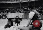Image of Basque country stone lifting competition Spain., 1957, second 10 stock footage video 65675040128