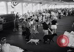 Image of dog show Asbury Park New Jersey USA, 1957, second 7 stock footage video 65675040132