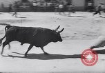 Image of bull fighting Alcochete Portugal, 1953, second 7 stock footage video 65675040157