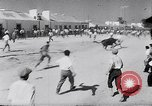 Image of bull fighting Alcochete Portugal, 1953, second 10 stock footage video 65675040157