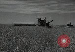 Image of wheat field Russia, 1941, second 10 stock footage video 65675040204