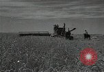 Image of wheat field Russia, 1941, second 12 stock footage video 65675040204