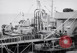 Image of USS Chara supply transfer Pacific Ocean, 1950, second 8 stock footage video 65675040317