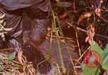 Image of punji sticks Vietnam, 1968, second 3 stock footage video 65675040362