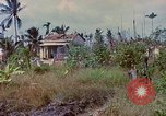 Image of Viet Cong graves Vietnam, 1968, second 12 stock footage video 65675040368