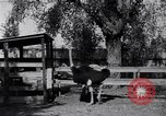 Image of California Ostrich farm Los Angeles California USA, 1916, second 6 stock footage video 65675040389