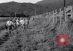 Image of Los Banos Internment Camp Laguna Philippines, 1945, second 17 stock footage video 65675040427