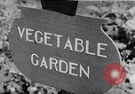 Image of Vegetable Garden Japan, 1945, second 1 stock footage video 65675040431