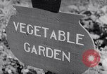 Image of Vegetable Garden Japan, 1945, second 2 stock footage video 65675040431