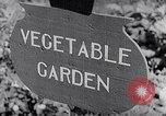 Image of Vegetable Garden Japan, 1945, second 3 stock footage video 65675040431