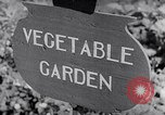 Image of Vegetable Garden Japan, 1945, second 4 stock footage video 65675040431