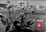 Image of Vegetable Garden Japan, 1945, second 6 stock footage video 65675040431