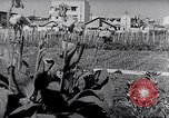 Image of Vegetable Garden Japan, 1945, second 7 stock footage video 65675040431
