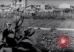 Image of Vegetable Garden Japan, 1945, second 8 stock footage video 65675040431