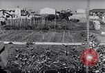 Image of Vegetable Garden Japan, 1945, second 10 stock footage video 65675040431
