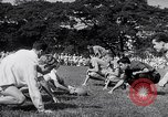 Image of Civilian internees Japan, 1945, second 6 stock footage video 65675040432