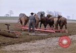 Image of Farmer with horses and mules plows field New York United States USA, 1970, second 4 stock footage video 65675040536