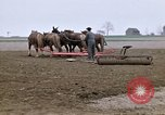 Image of Farmer with horses and mules plows field New York United States USA, 1970, second 10 stock footage video 65675040536