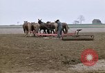Image of Farmer with horses and mules plows field New York United States USA, 1970, second 12 stock footage video 65675040536