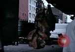 Image of Meat packing district New York City USA, 1970, second 12 stock footage video 65675040544