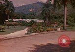 Image of greenhouse Kingston Jamaica, 1972, second 2 stock footage video 65675040555