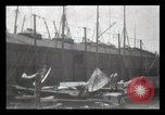 Image of Robert Peary New York City USA, 1905, second 7 stock footage video 65675040612