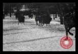 Image of Sleighs New York City USA, 1898, second 4 stock footage video 65675040624