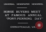 Image of Horse buyers Chincoteague Island Virginia USA, 1931, second 3 stock footage video 65675040715