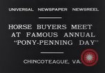 Image of Horse buyers Chincoteague Island Virginia USA, 1931, second 5 stock footage video 65675040715